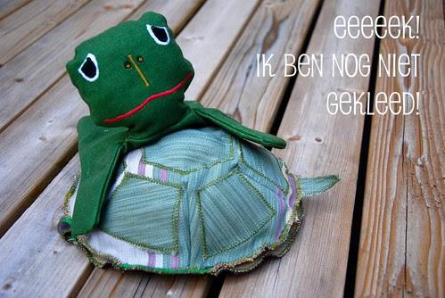 Axenroos: de (naakte) schildpad