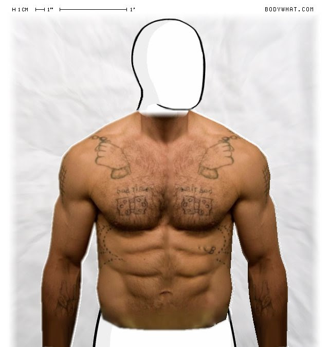 body fat percentage for height