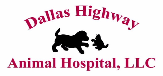 Careers at Dallas Highway Animal Hospital