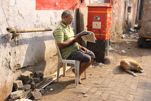 the dog is much happier not reading the daily news by firoze shakir photographerno1