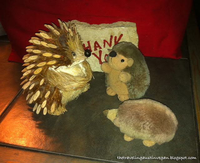 Hedgie and Buttercup Make A Friend