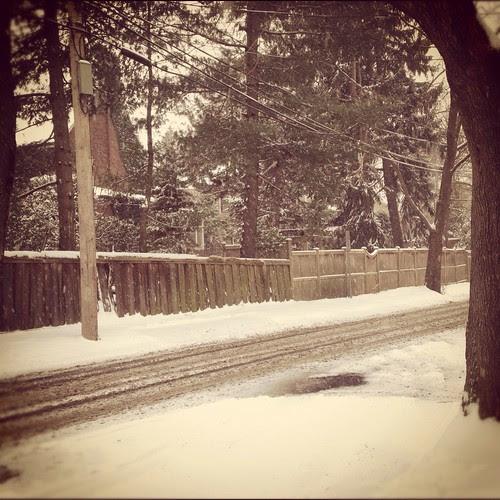 Snowy Neighbourhood