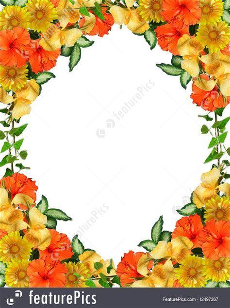 Templates: Tropical Flowers Border   Stock Illustration