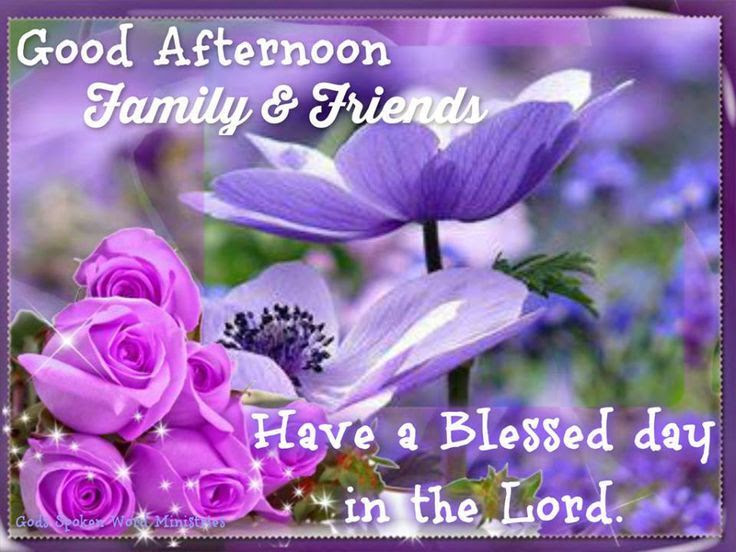 Good Afternoon Family Friends Pictures Photos And Images For