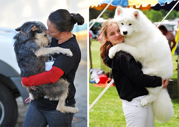 cute-dogs-hugging-humans-96
