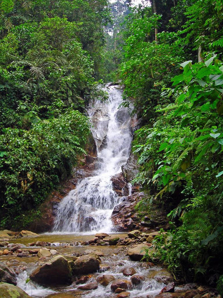 Cascada cerca de Floridablanca, Santander, Colombia