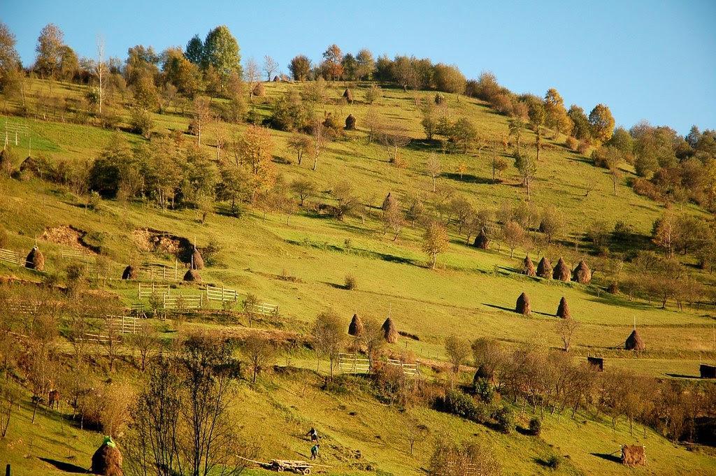 Countryside, Botiza, Maramures