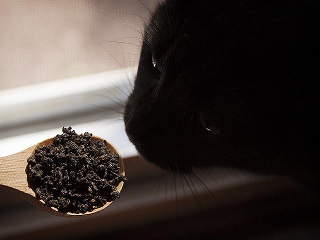 tea assistant.