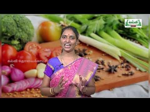 11th Home Science உணவு அறிவியல்  அலகு 3 பகுதி 2 Kalvi TV