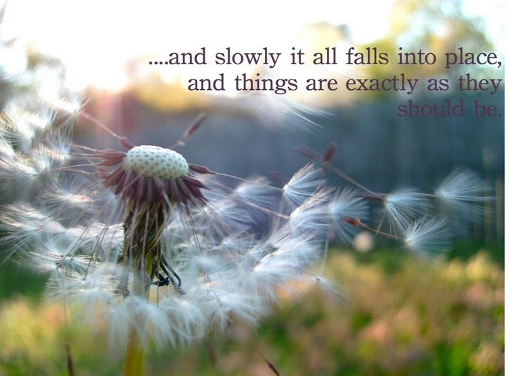 Quotes About Fall Into Place 85 Quotes