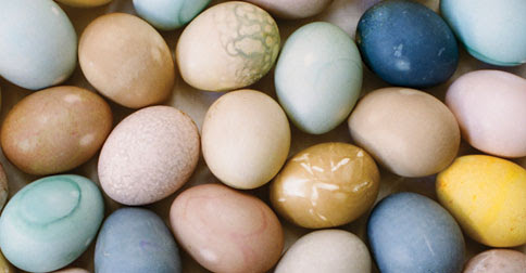 Coloring Easter Eggs Without Dyes + Homegrown Paleo