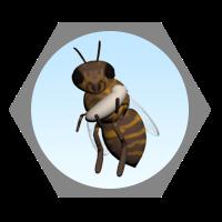 Η τροφός, παραμάνα μέλισσα