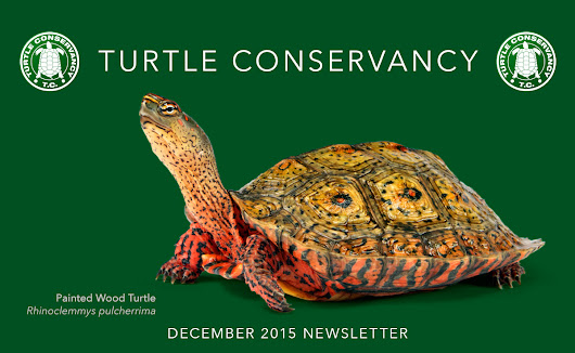 Ted Turner and the Turtle Conservancy wish you a Happy Holiday