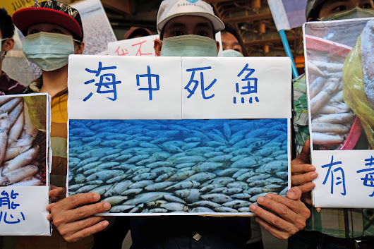 Vietnam Says Taiwan's Formosa Caused Millions of Fish Deaths