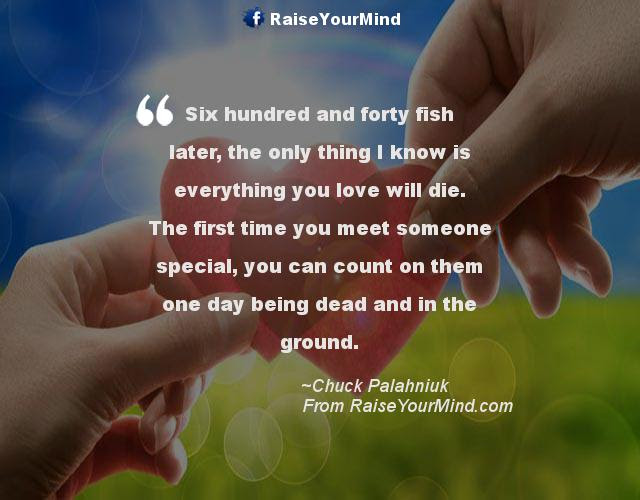 Love Quotes Sayings Verses Six Hundred And Forty Fish Later