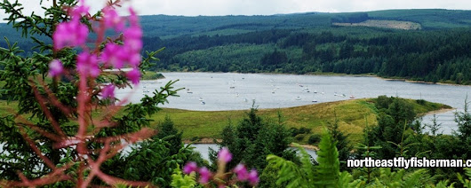 Epic Kielder? Lets see shall we... - North East Fly Fisherman