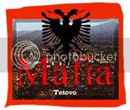 Did the Albanian Mafia Murder Zef Vulevic?