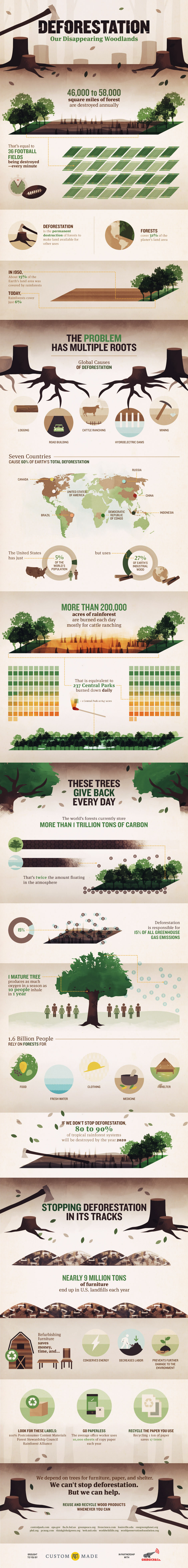 Deforestation: Our Disappearing Woodlands | CustomMade.com