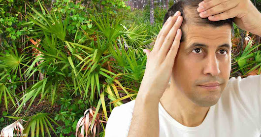 Health Benefits of Taking Saw Palmetto