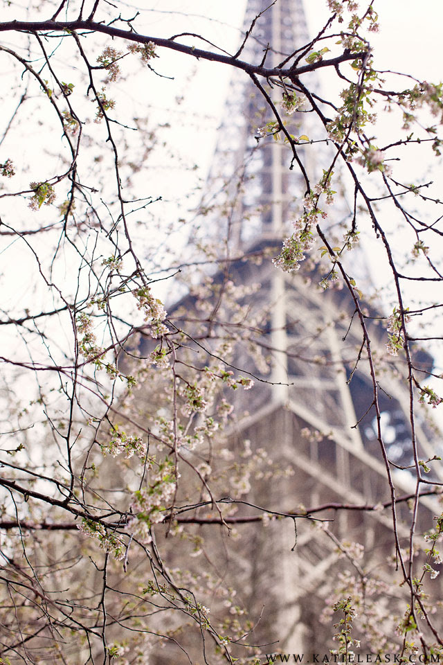 Katie-Leask-Photography-013-Blossom-Spring-Paris-Eiffel-Tower--S