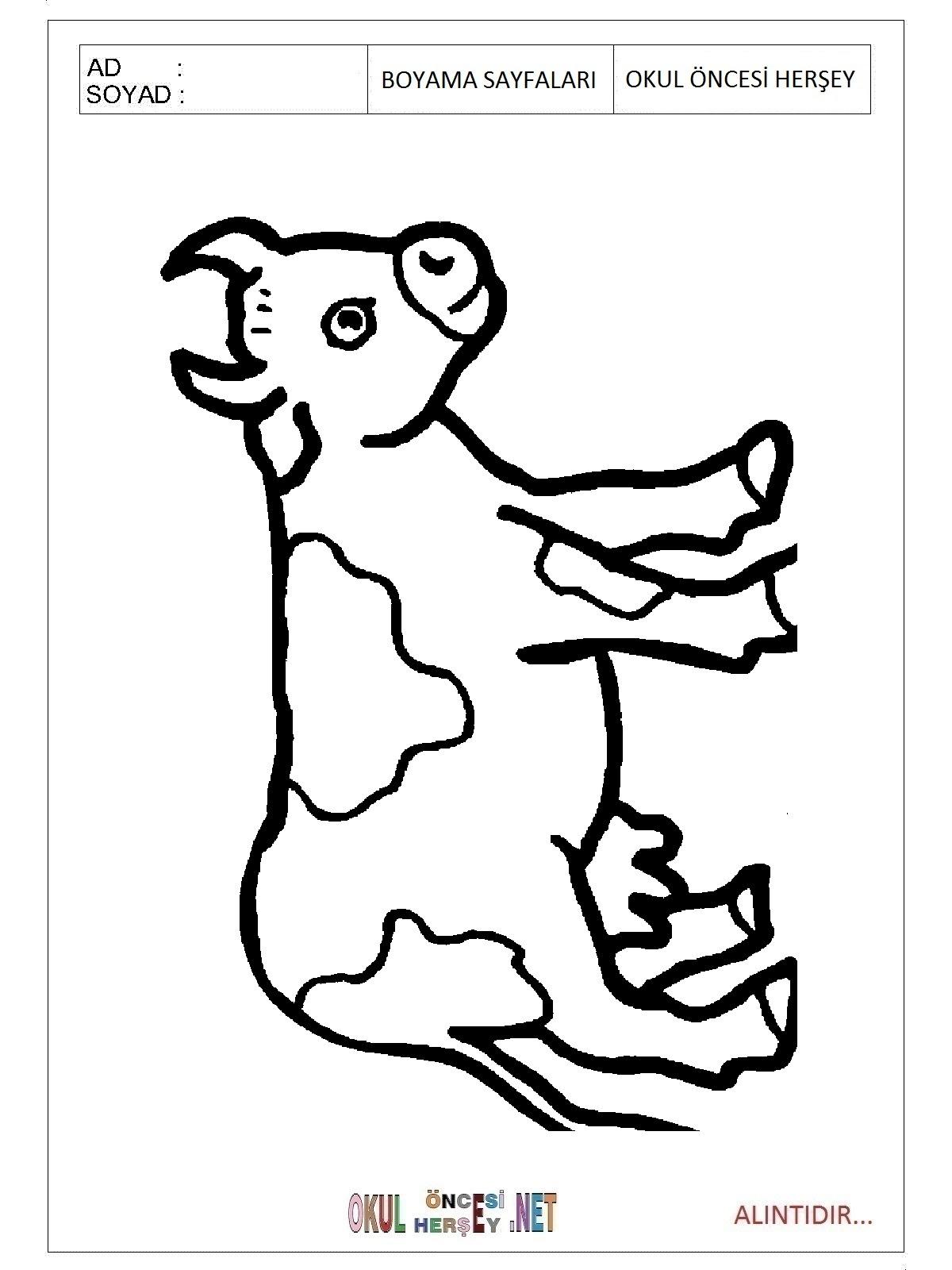 Inek Boyama Sayfaları