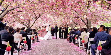 brooklyn botanic garden  york weddings