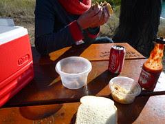 bbq picnic