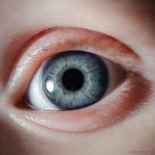 Blue Eyed Macro