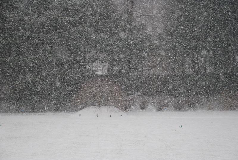 File:December 19, 2008 Snowstorm in S.  Westchester1.JPG