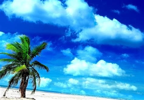 10 Cool Beach Wallpaper For Android Designs   Project 4