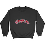 Official NCAA Washington State University Cougars - PPWST04, G.A.18000, BLK, S Size Small Black