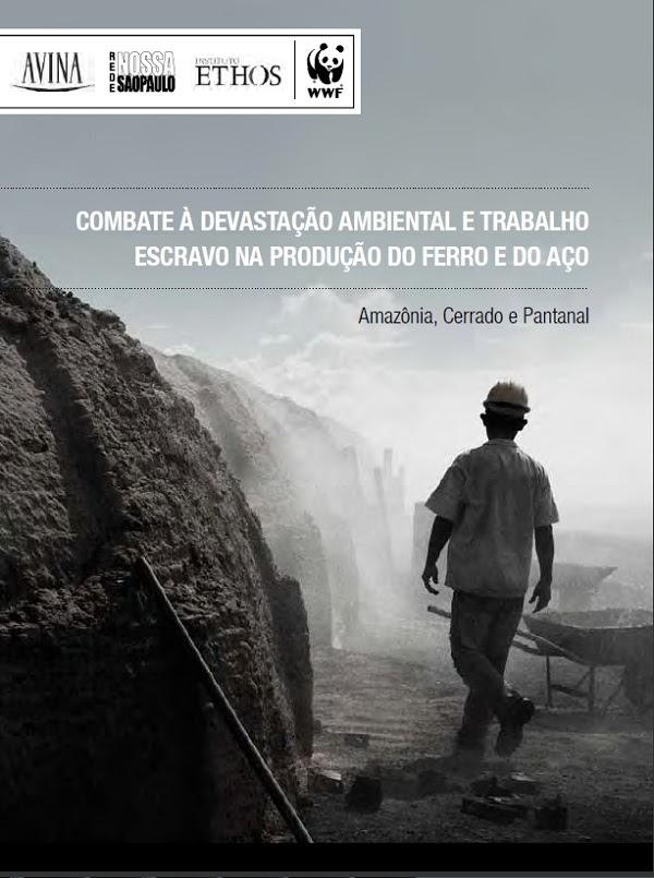 Estudo denuncia como indústria de ferro e aço lucra com escravidão e desmatamento