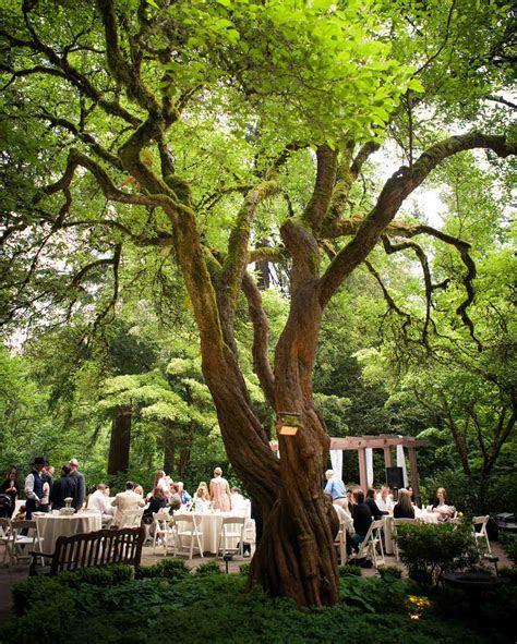 18 Beautiful Botanical Garden Wedding Venues   Martha