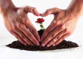 Fe Esperanza Amor Alegría Y Paz