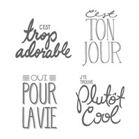 Gros Coup De Cœur Photopolymer Stamp Set (French)