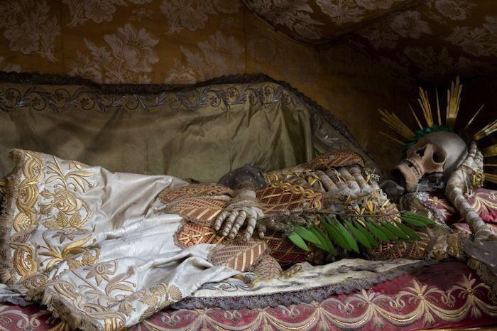 Indiana Bones Saint In Shrouds