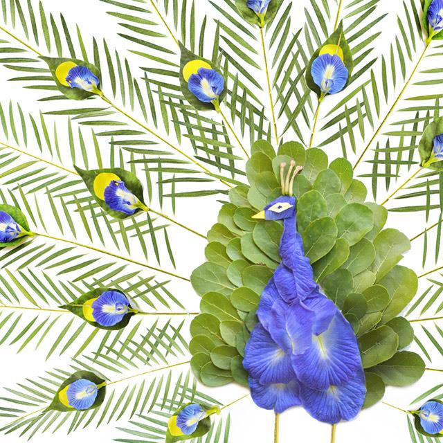 Pássaros feitos de pétalas de flores e folhas por Red Hong Yi plantas múltiplas flores pássaros