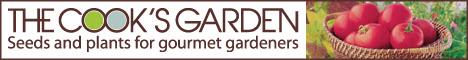 Logo Creative Homepage Banner