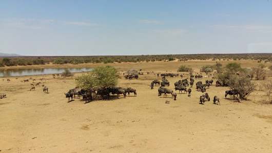 Food for thought, food for drought in Namibia - Africa Geographic