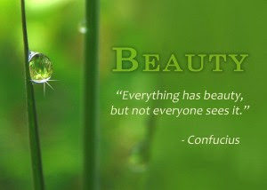 Beauty Everything Has Beauty But Not Everyone Sees It Nature