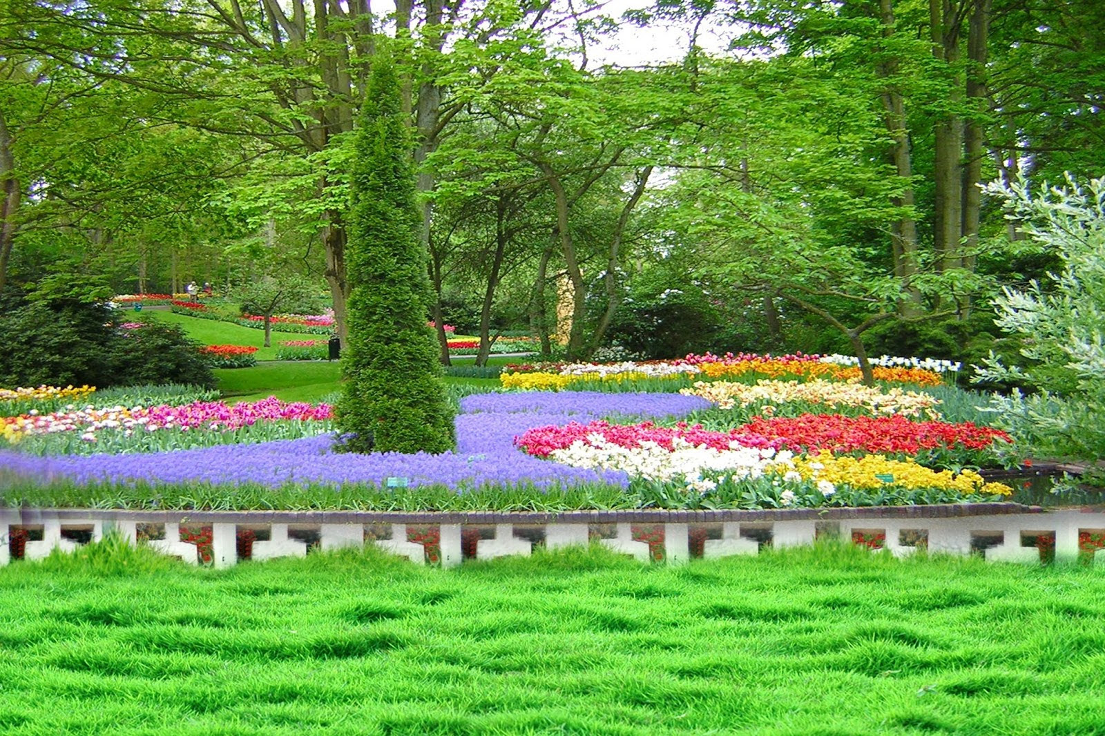 Photoshoot Garden Background Hd Images For Photoshop