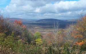 English: View of Canaan Valley, West Virginia,...
