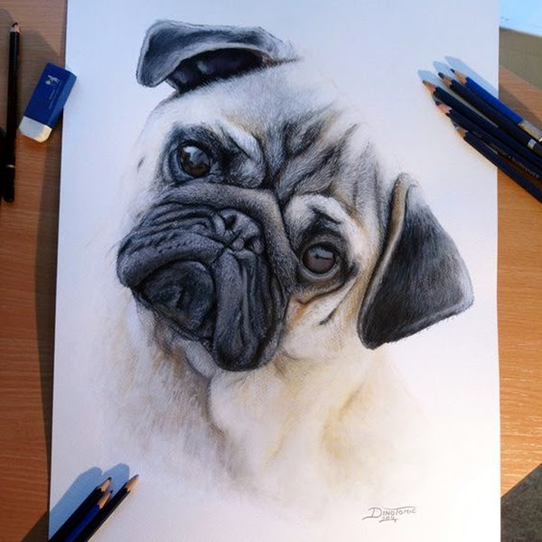 color pencil drawing Examples (29)