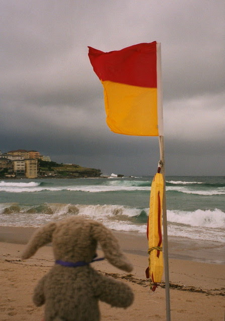 No Surfing!