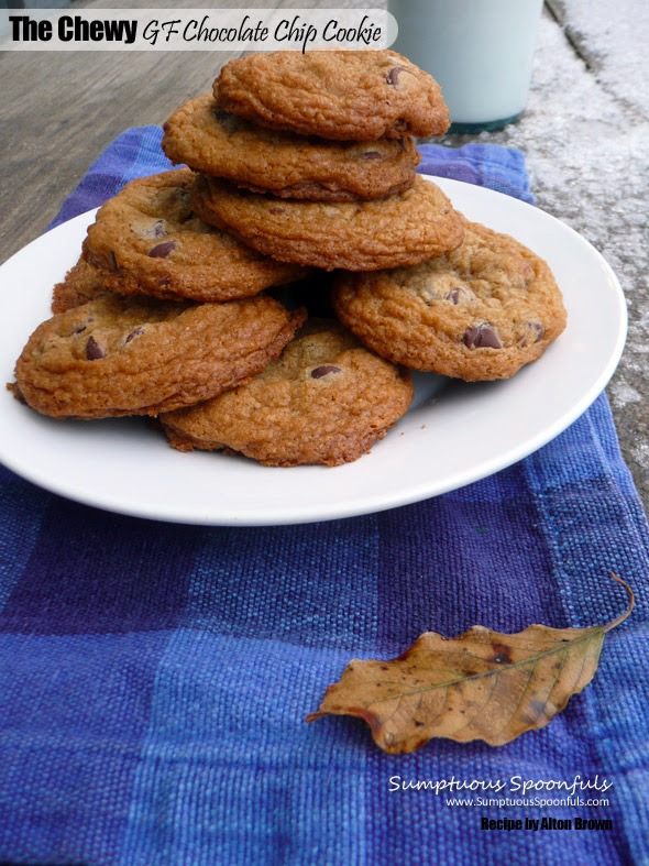 The Gluten Free Chocolate Chip Cookie Test | Sumptuous ...