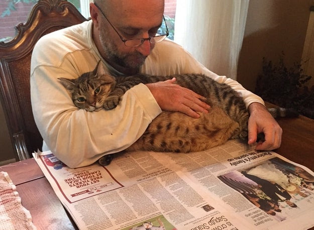 They're perfectly content to spend a lazy morning cuddling while you read the paper.