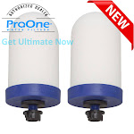 "ProOne G2.0 Filter Element (M filter, 5 inch G2.0 , 7 inch G2.0 , & 9 inch G2.0 ) PROONE G2.0 5"" FILTER / Two"