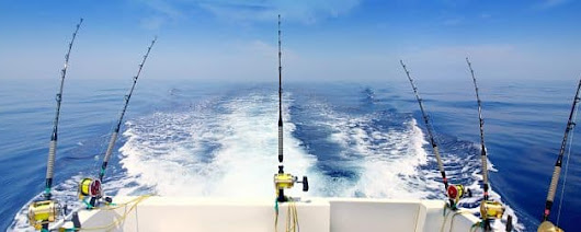 Louisiana Fishing - Venice Offshore Fishing Charters