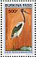 Saddle-billed Stork Ephippiorhynchus senegalensis