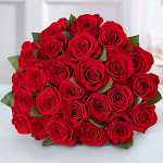 Flower Delivery by 1-800 Flowers Two Dozen Red Roses Bouquet Only - Special Occasions Roses by 1-800F Flowers